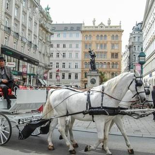 Vienna, carrozza