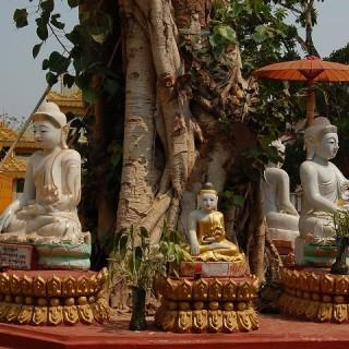 Birmania, Buddha