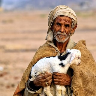 Egitto, anziano