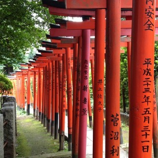 Giappone, Tokyo, Ueno