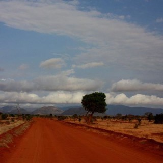 Kenya, savana