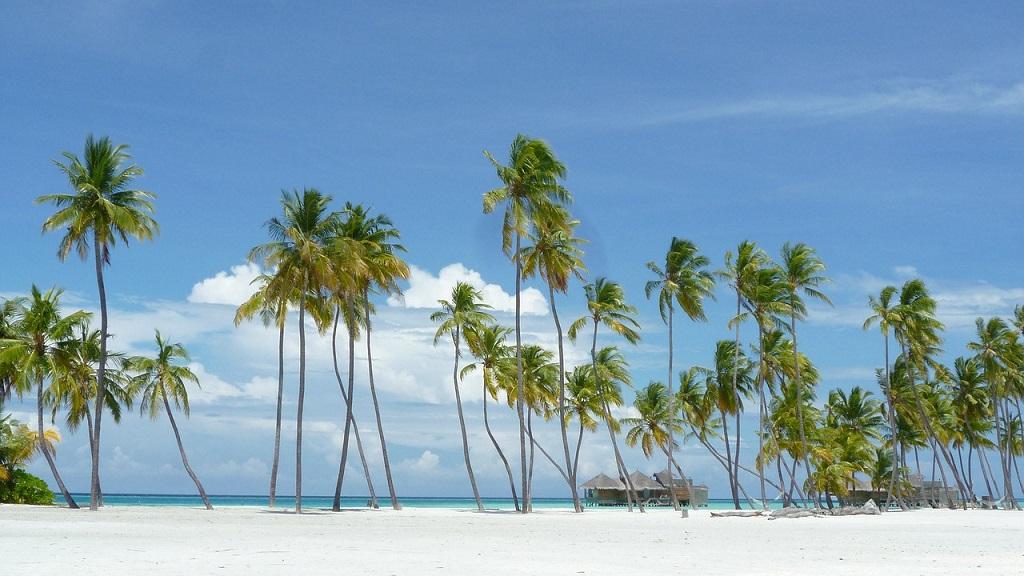 Maldive, tropici