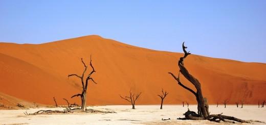 Namibia, deserto Deadvlei