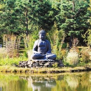Nepal, buddha