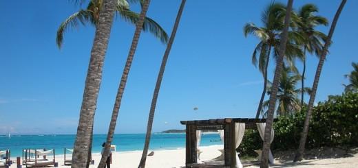 Repubblica Dominicana, spiaggia e palme