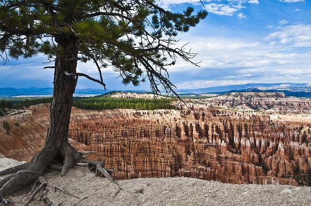 Stati Uniti, Bryce Canyon