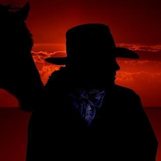 Stati Uniti, cowboy